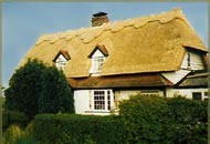 McGee & Co. Roof Thatching